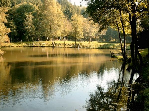 Angelpark Barweiler Mühle - Teich 2